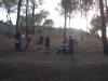 Bosque, Talavera