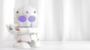 robot montable rapiro