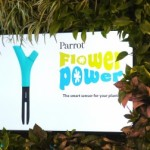 Parrot Flower Power dispositivo ya a la venta