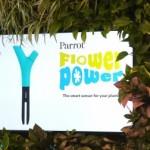 Parrot Flower Power dispositivo ya a la venta