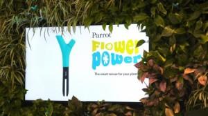 parrot flower power para el cuidado del jardin