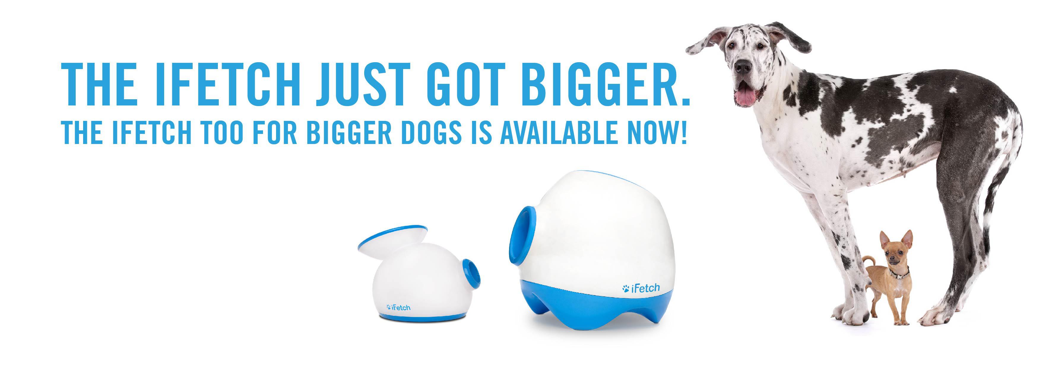 iFetchToo lanza pelotas para tu perro